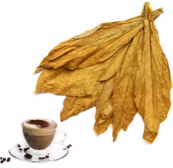 Aroma Tabak Cappuccino