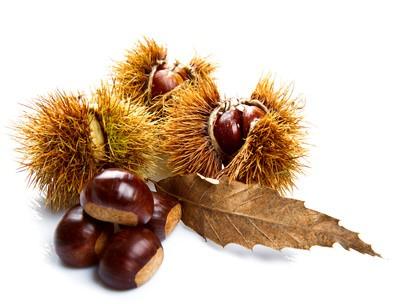 Aroma Iced Chesnut