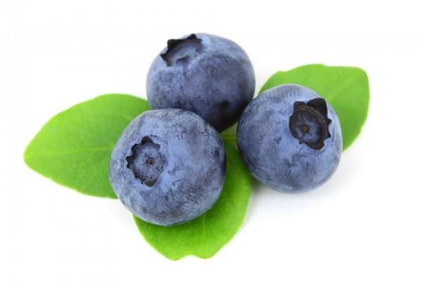 Aroma Blueberry Juicy Ripe