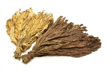 Aroma Indian Tabak