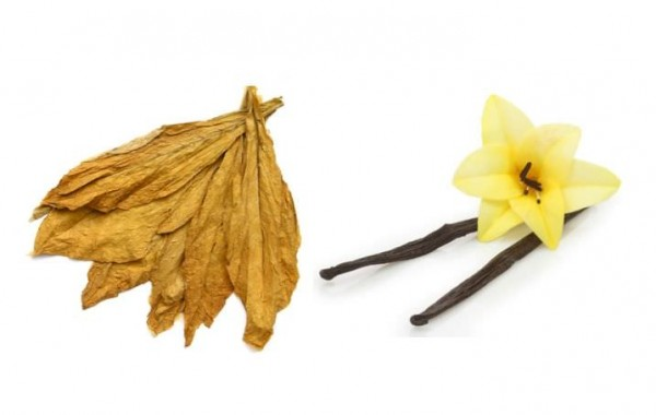 Aroma Pfeifentabak Vanille