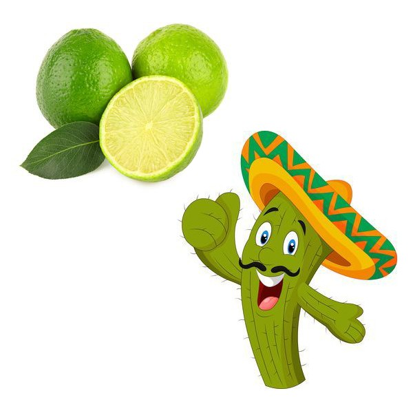 Aroma Kaktus-Limette