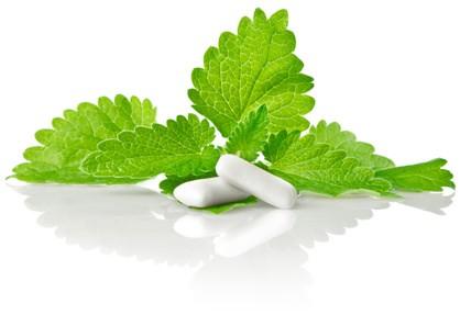 Aroma Spearmint (CA)