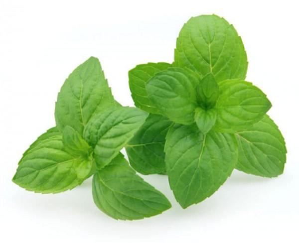 Aroma Peppermint (CA)