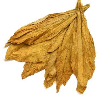 Aroma 7 Leaves