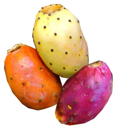 Aroma Kaktusfeige (INA)
