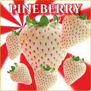 Aroma Pineberry
